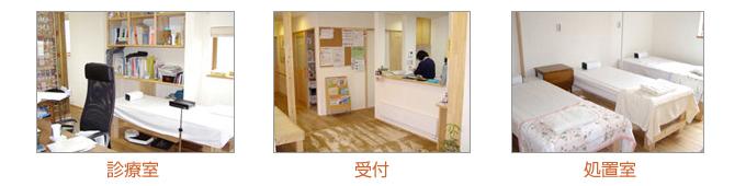sugihara_img02.jpg